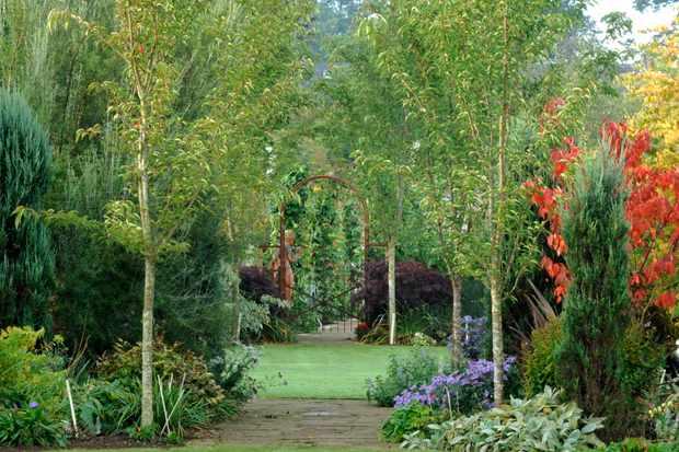 Larch Cottage Nurseries & Garden