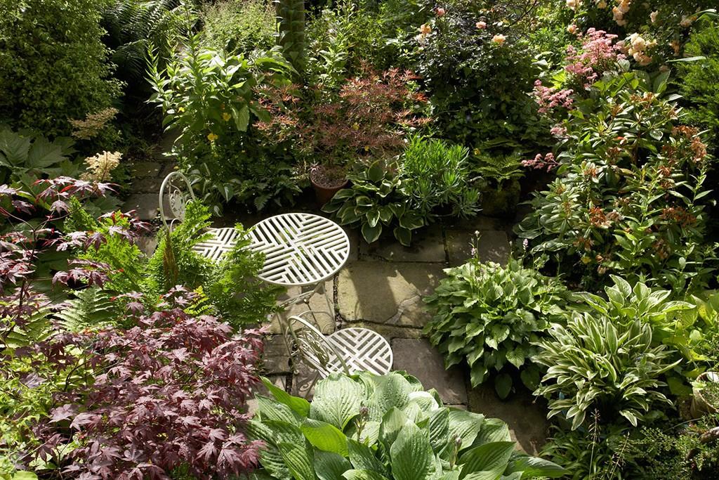 Millgate House Gardens