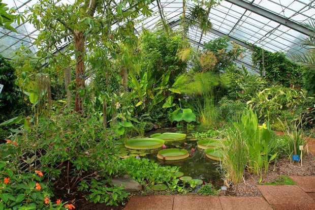 Dundee University Botanic Garden