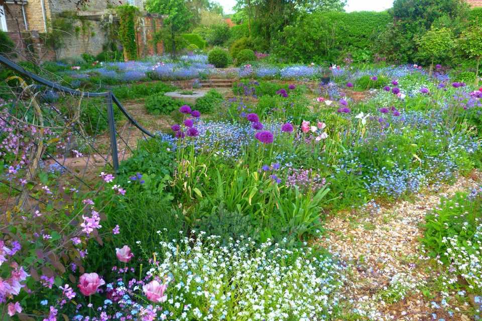 Hall Farm Garden