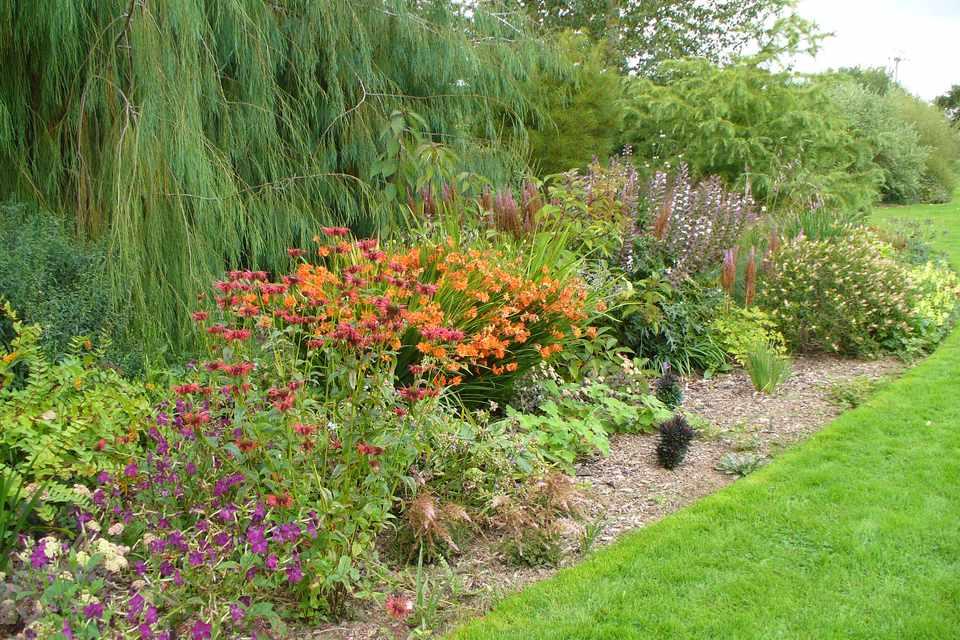 Ivy Croft Garden