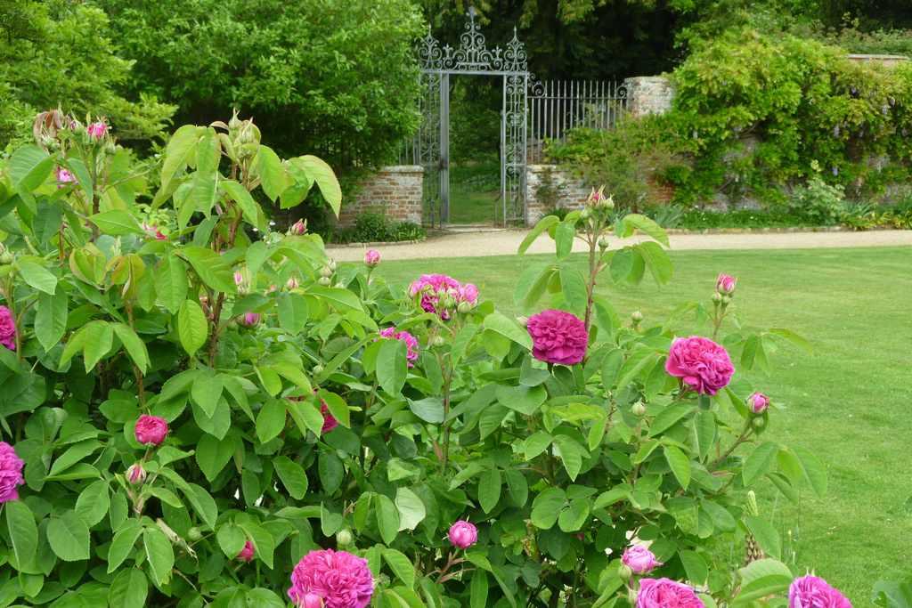 Kingston Bagpuize House & Garden