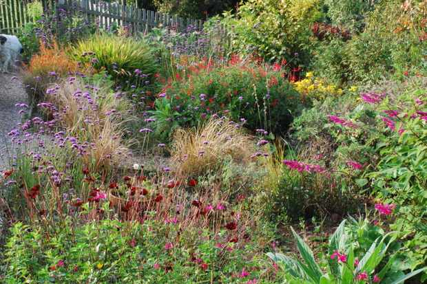 Plant World Gardens