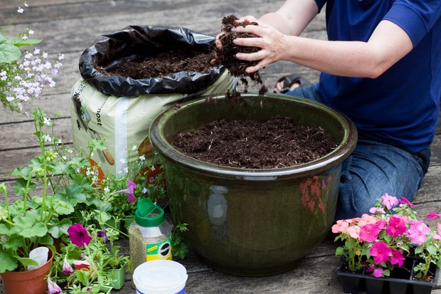 Adding compost to a container, before planting