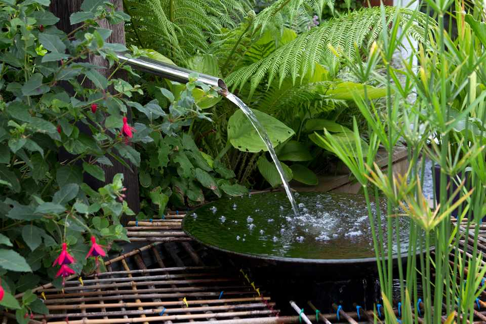Nine Best Garden Water Feature Ideas Bbc Gardeners