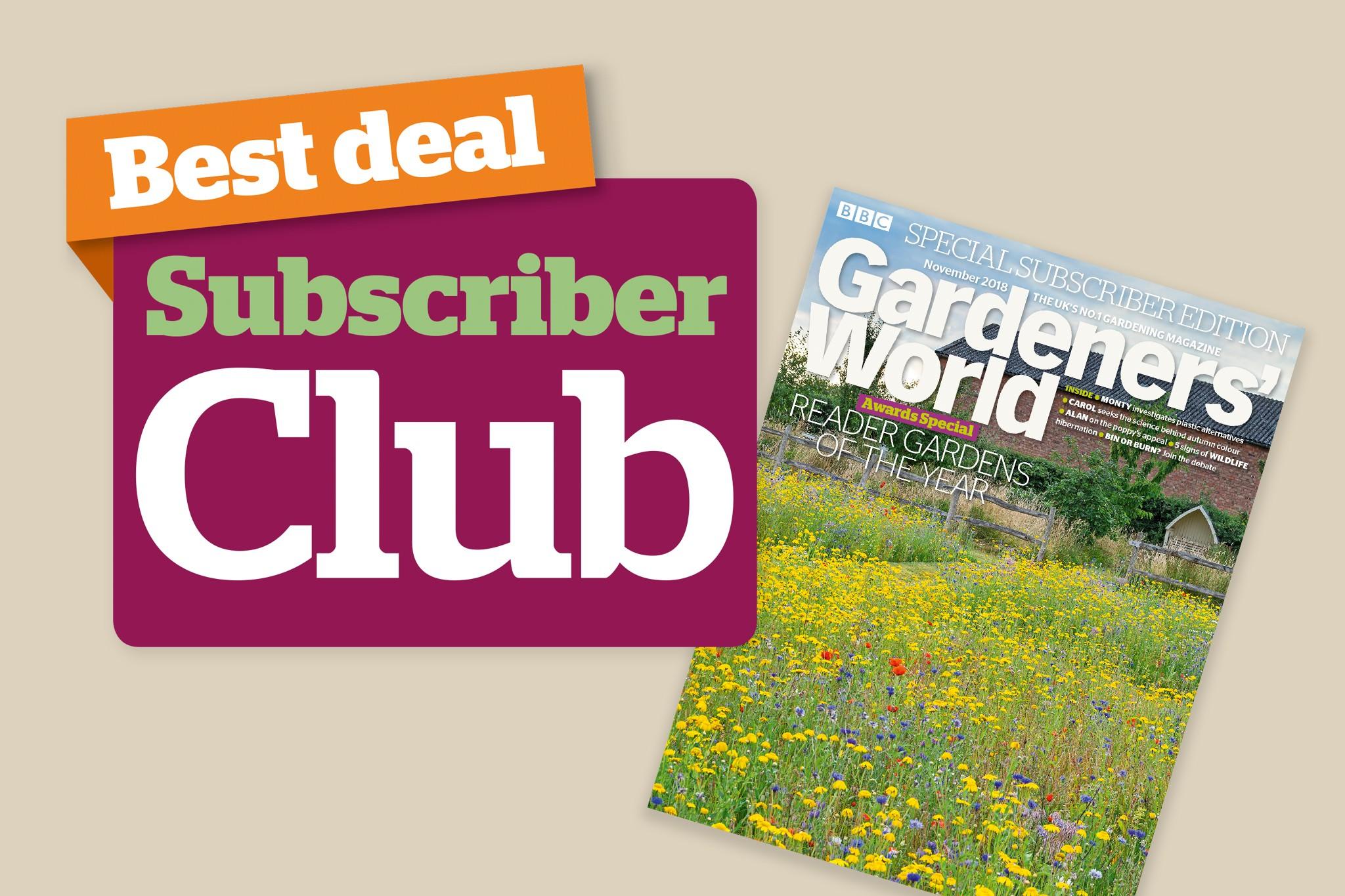 2048x1365-offers-subs-club-discount-nov