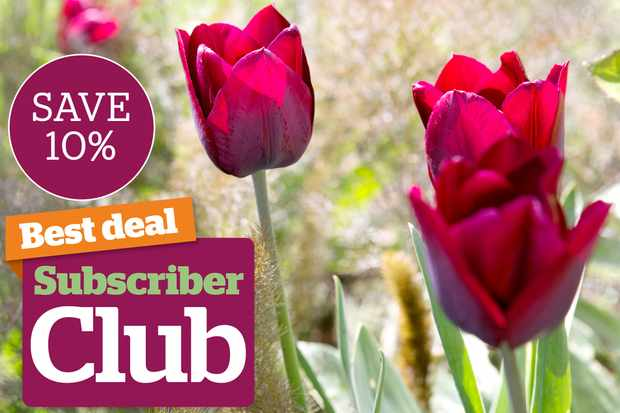 Subscriber Club 10 per cent discounts