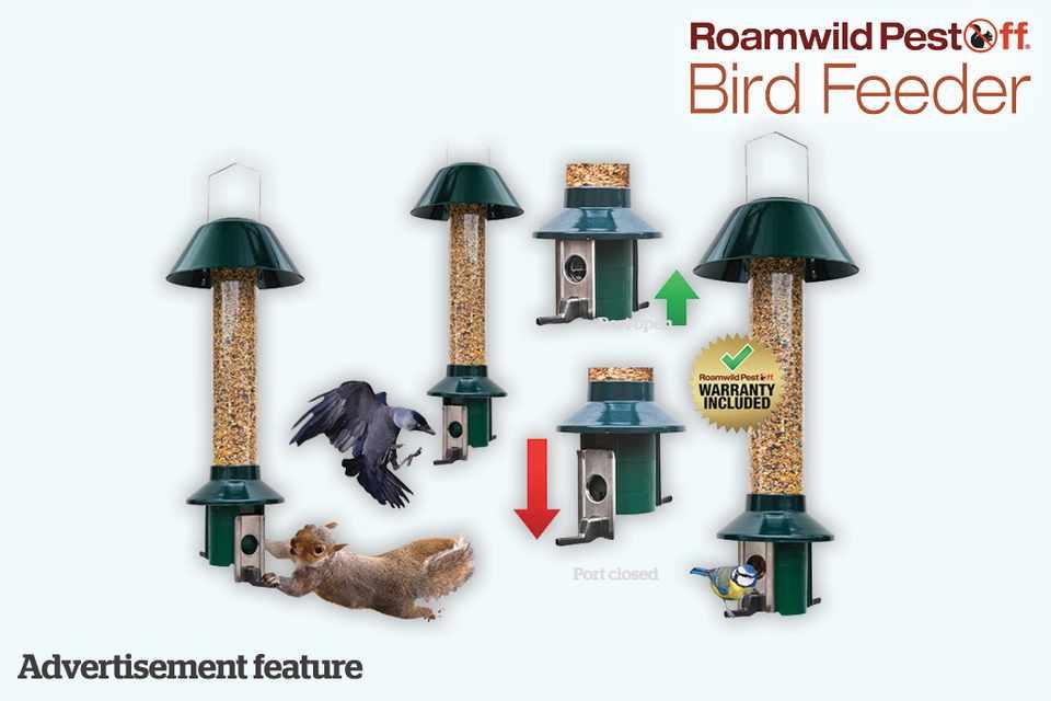 Win a PestOff bird feeder, from Homgar