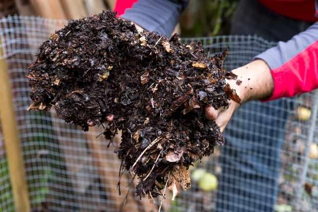 How to make a leaf mould bin