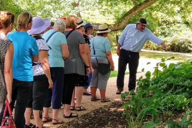 john-anderson-savill-garden-tour