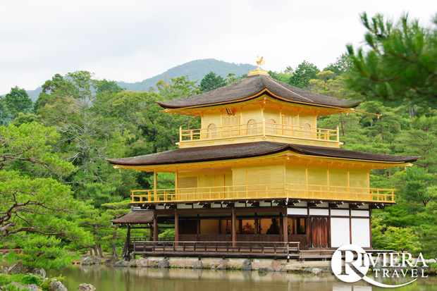Discover Japanese gardens on a tour of Japan with Riviera Travel