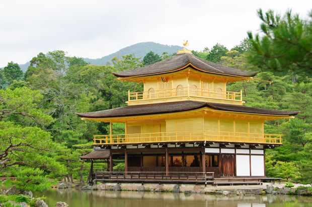 Discover Japanese gardens on a tour of 10 gardens
