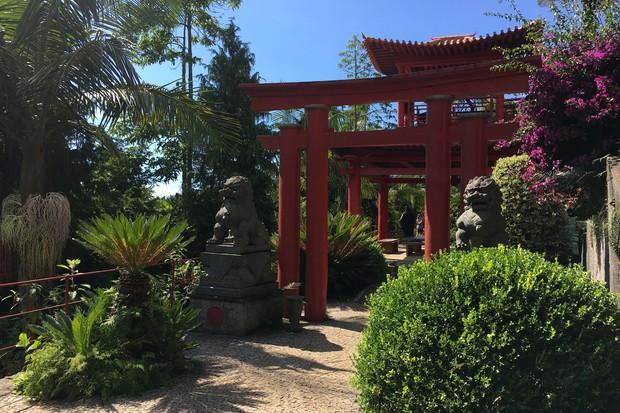monte-palace-tropical-garden_2-2048-1365