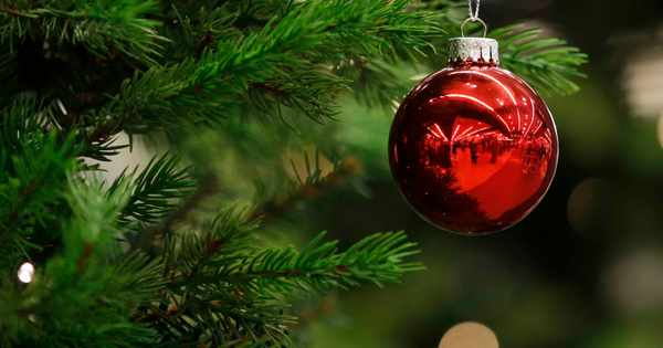 Six ways to recycle your Christmas tree