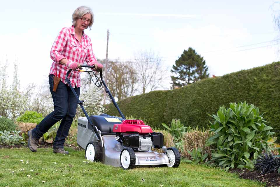 Mowing lawn grass path along edge of border Honda Izy push petrol rotary mower mow 100414 10042014 10/04/14 10/04/2014 10 10th April 2014 Sparsholt WTDN Photographer Sarah Cuttle Spring Rosie Yeomans practical projects step by step maintenance