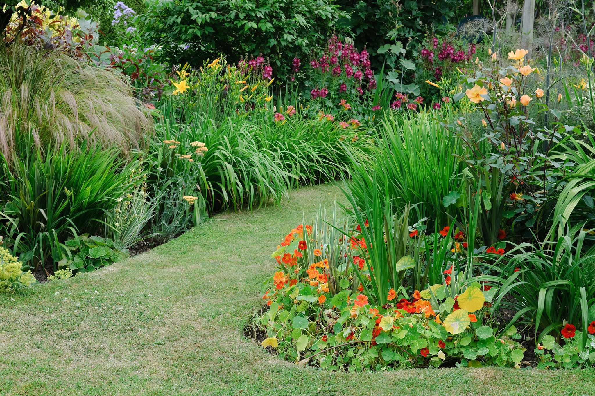 Amorphous garden borders
