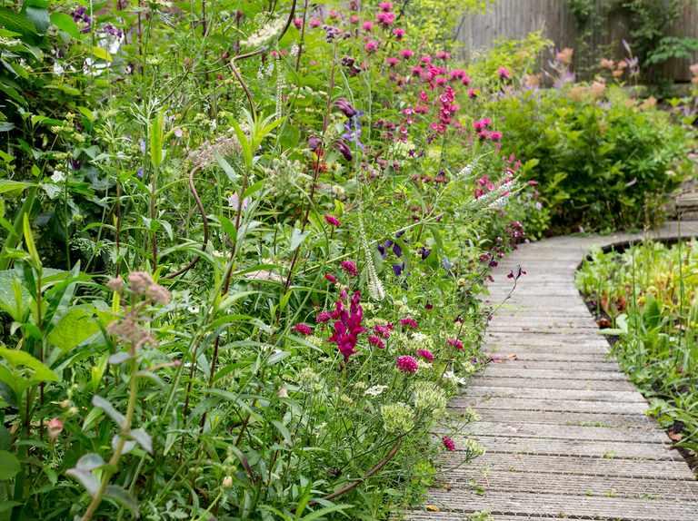 Ideas For A New Build Garden Bbc Gardeners World Magazine
