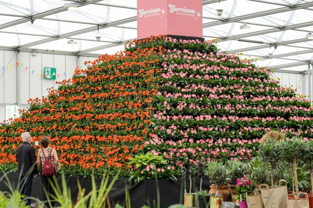 BBC Gardeners' World Live 2019 Floral Marquee