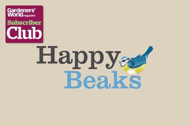 2048x1365-subscriber-club-10-per-cent-happy-beaks
