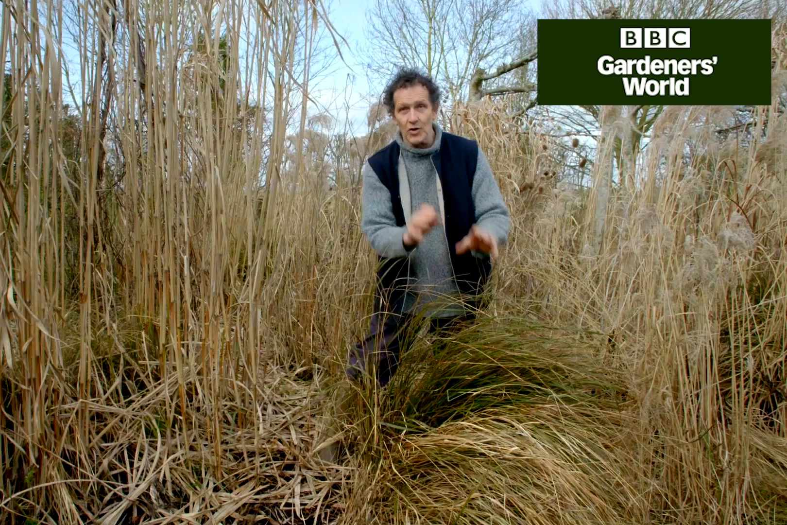 How to tidy ornamental grasses in spring - Gardeners' World video clip