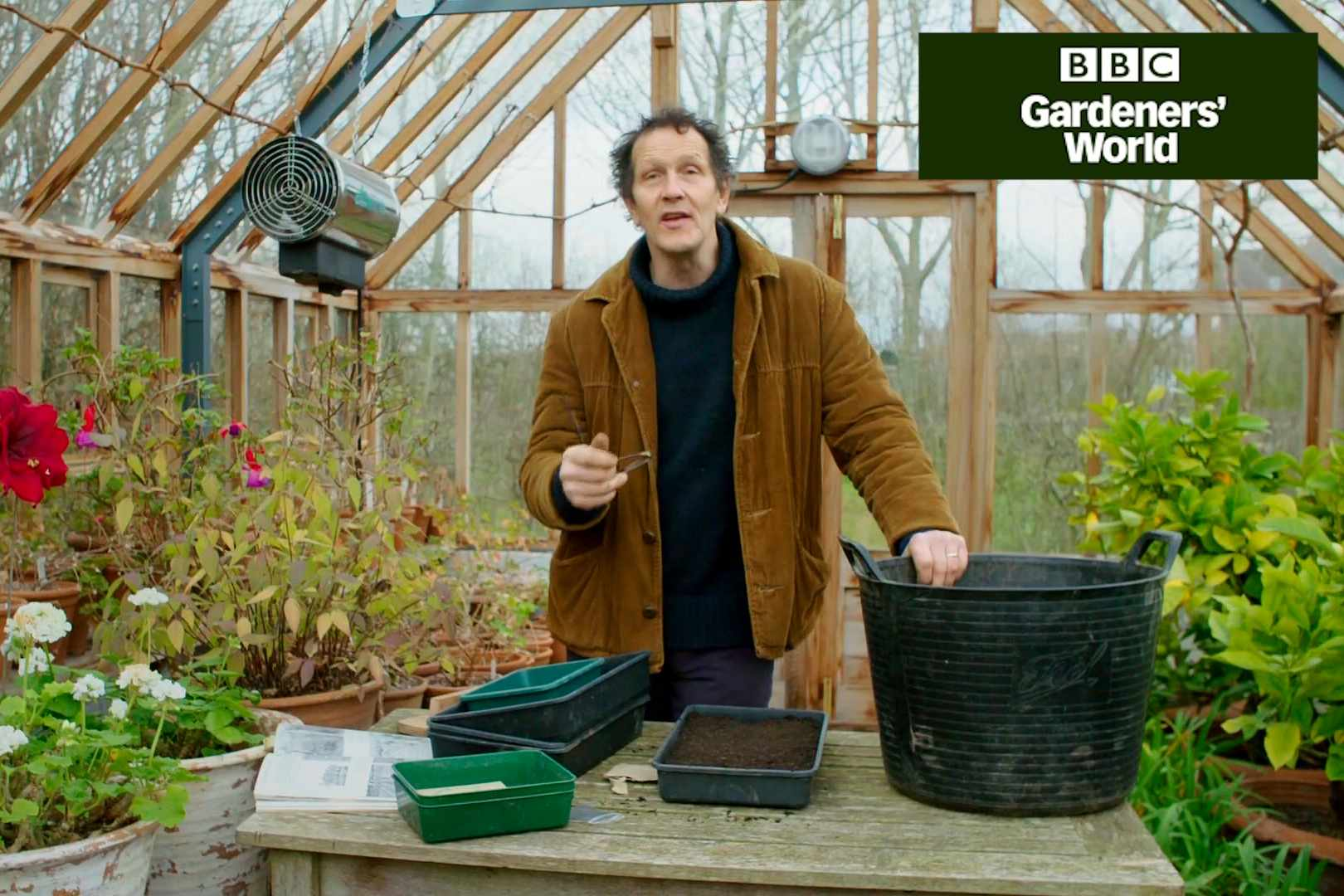 How to sow celery seed - Gardeners' World programme clip