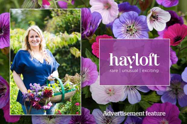 Win garden makeover and £500of vouchers from Hayloft