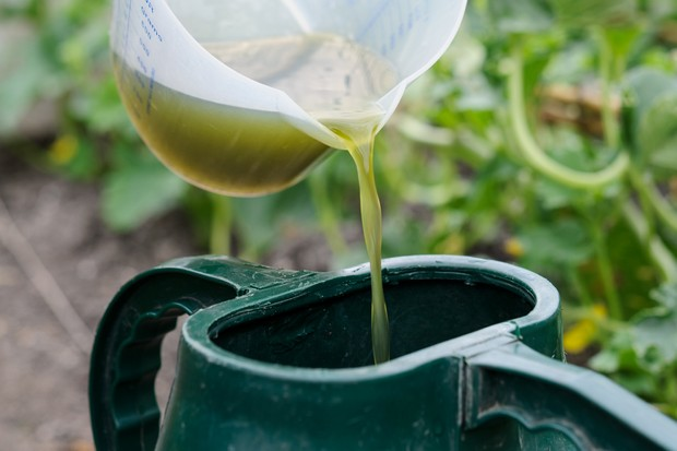 Reduce your carbon footprint - make your own fertiliser
