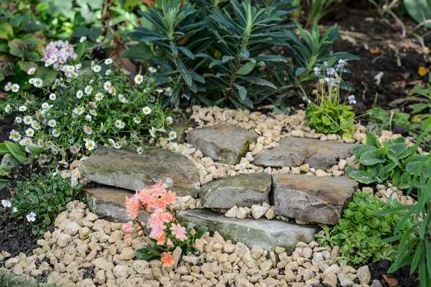 How to create a wildlife rock basking area