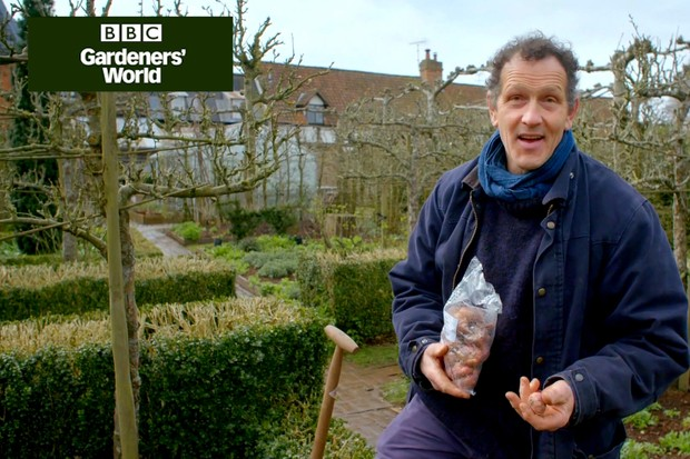 Monty Don starting a cut flower patch