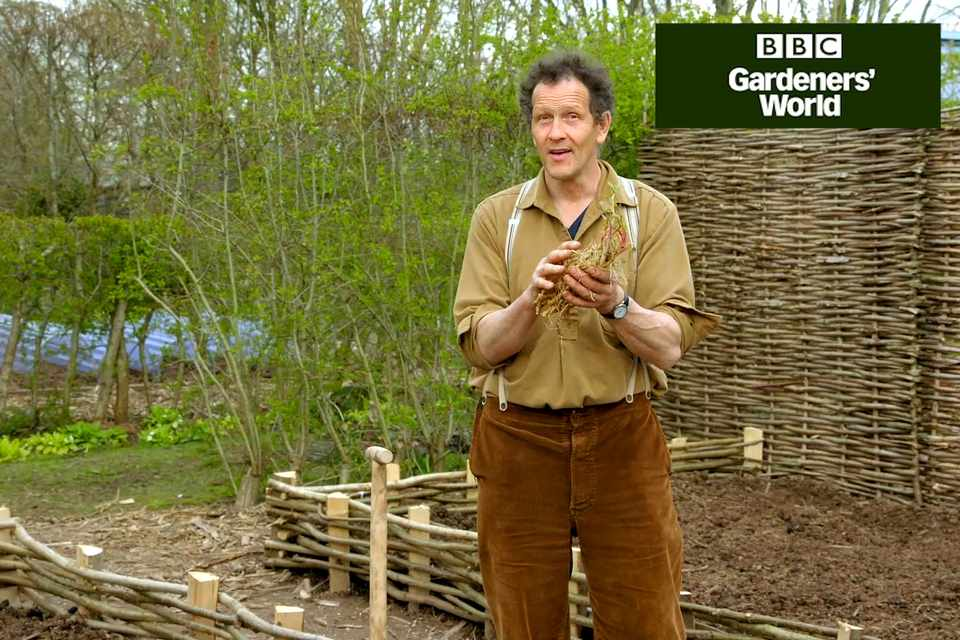 Monty Don demonstrating how to grow skirret