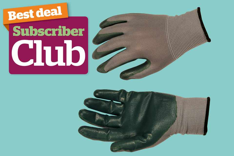 Subscriber Club competition gardening gloves