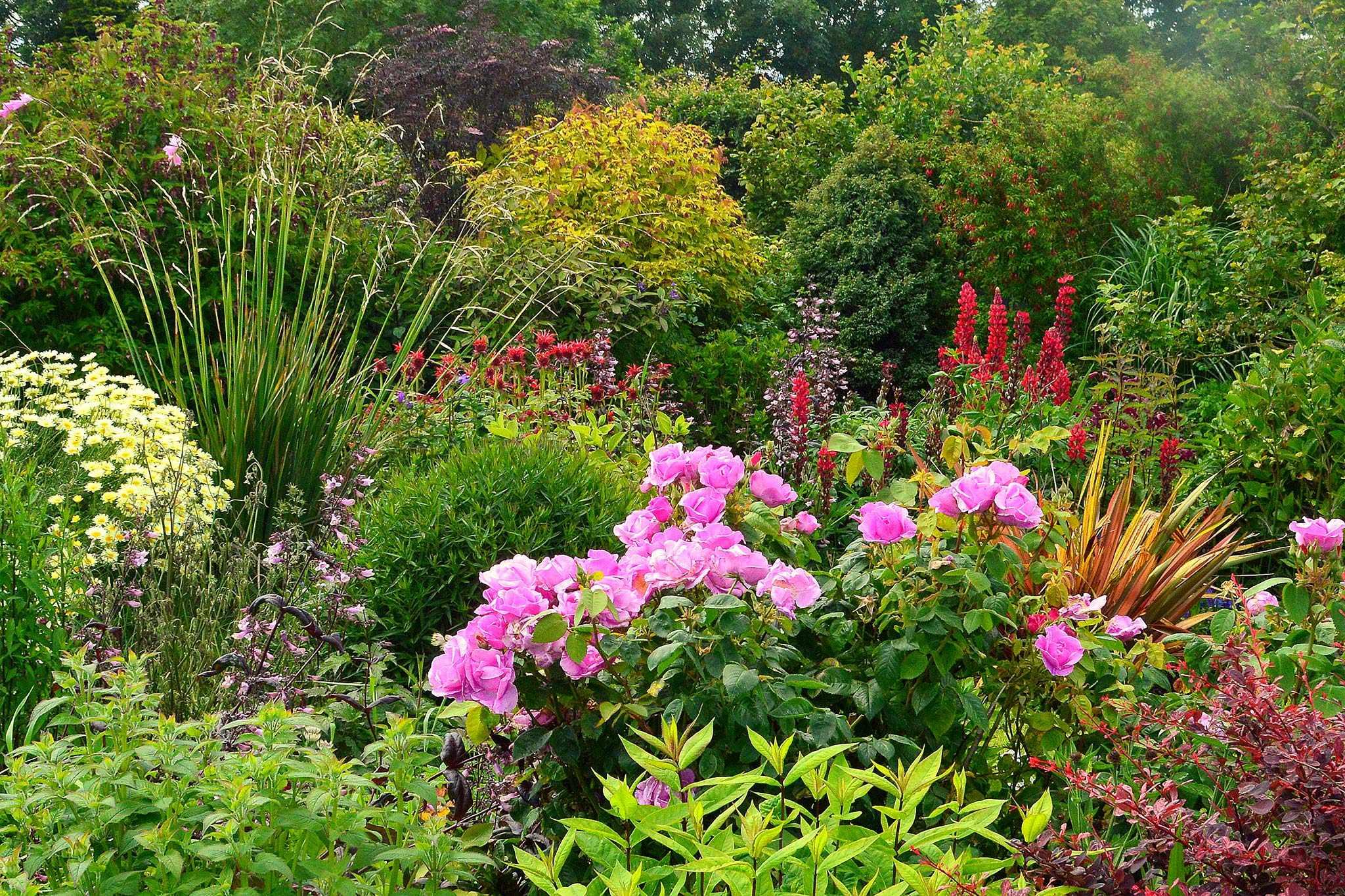 Kilcoan Gardens