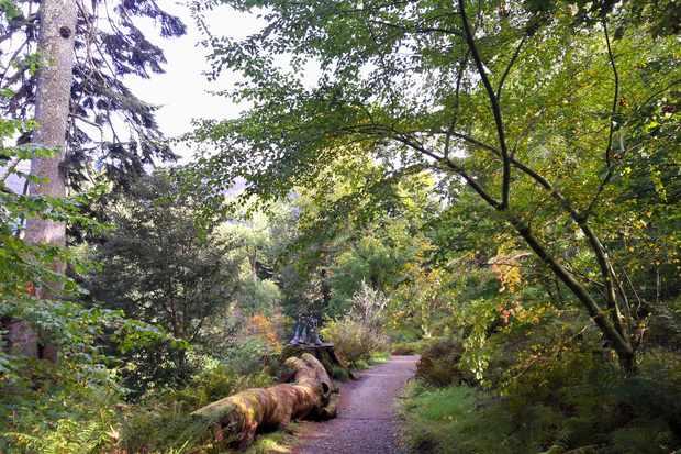 Ardkinglas Woodland Garden & Gruffalo Trail
