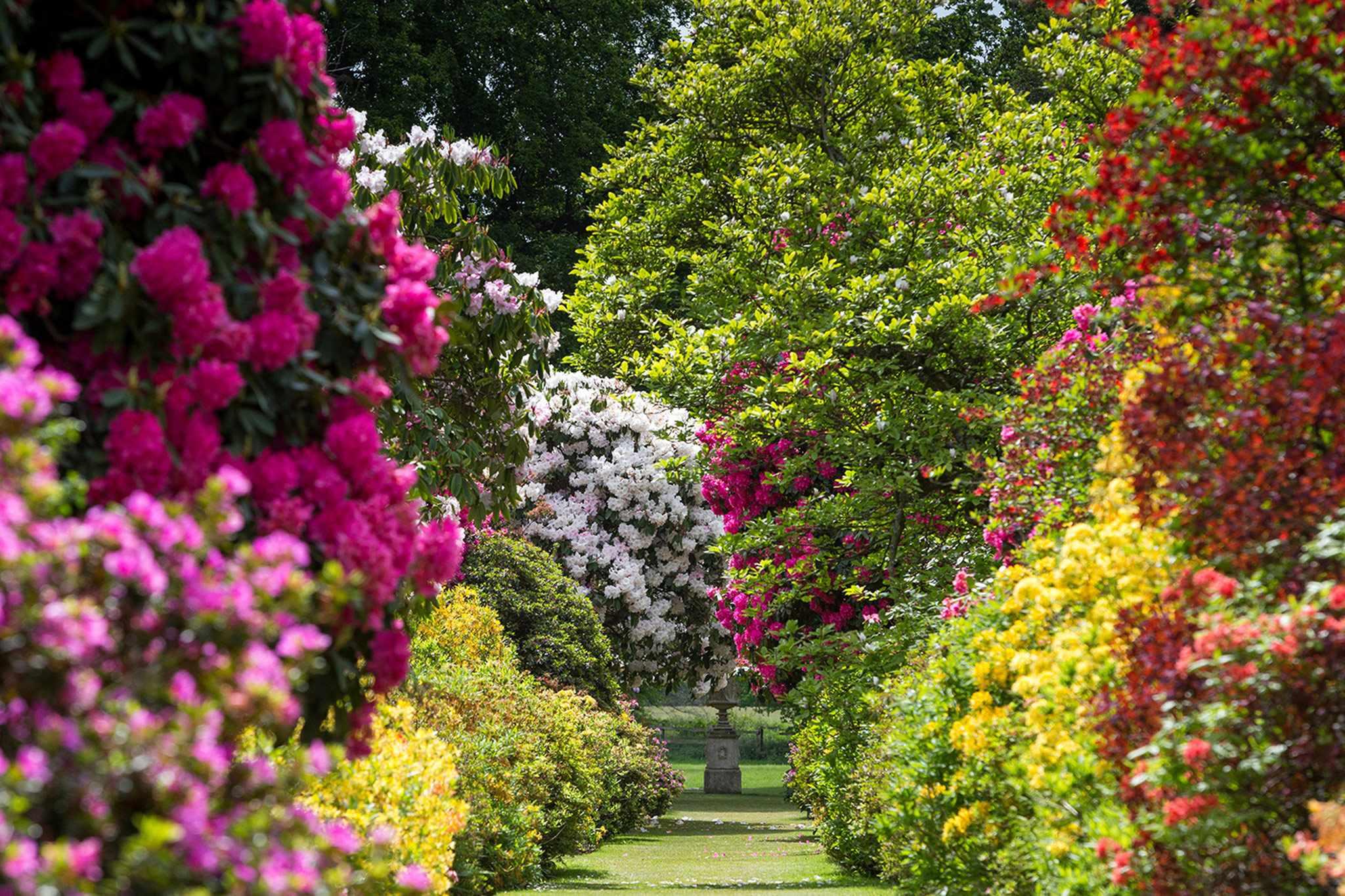 Stody Lodge Garden