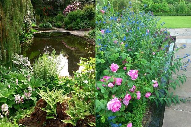 Bide-a-Wee Cottage Gardens