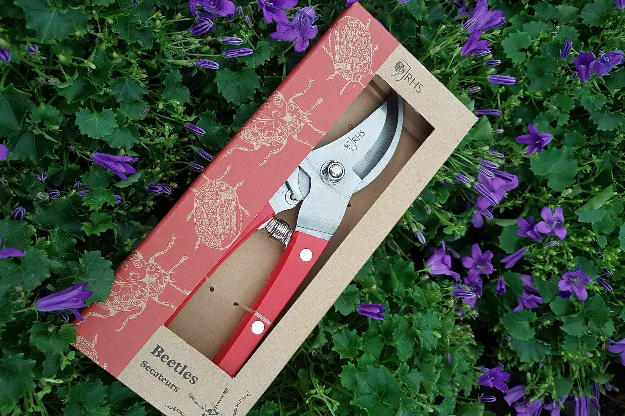 Secateurs from the RHS
