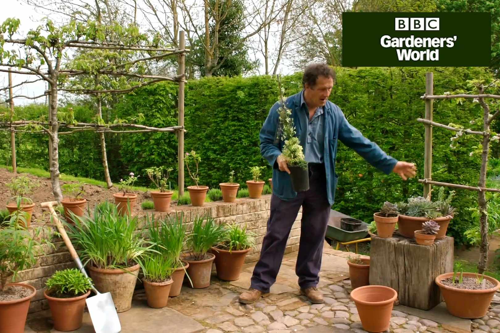 Planting for scent - Gardeners' World programme clip
