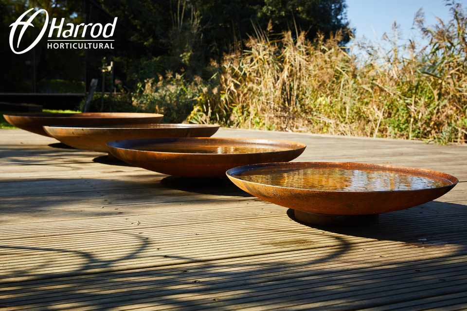 Win a Corten Water Bowl from Harrod Horticultural