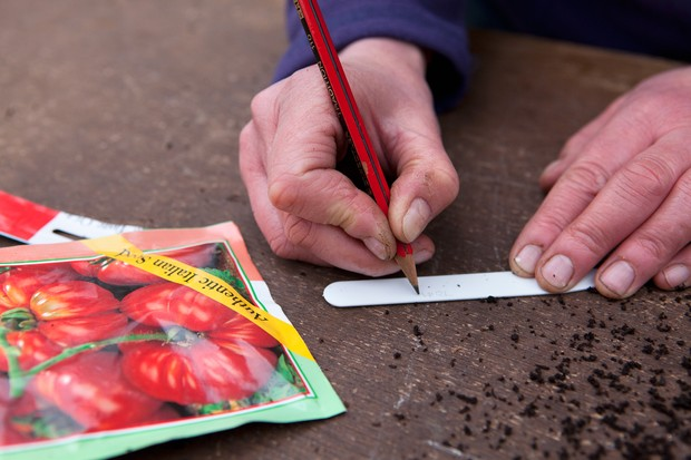 Thrifty tips - using a pencil to mark plant labels