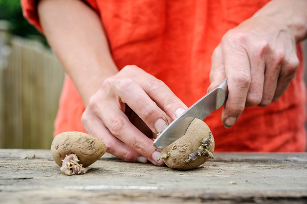 Thrifty tips - cutting potatoes in half