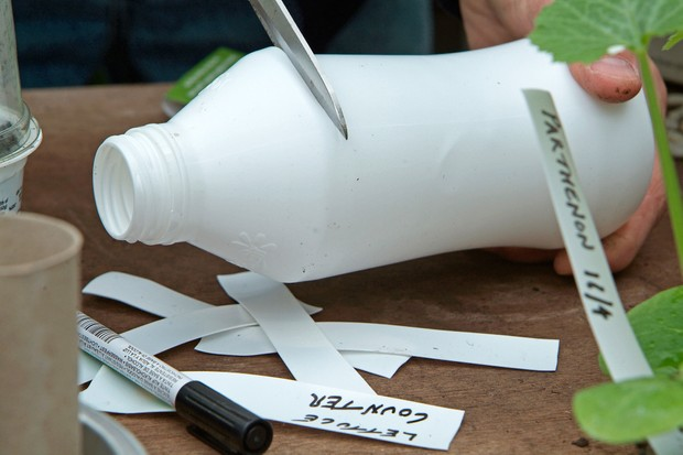 Thrifty tips - making plant labels from plastic bottles