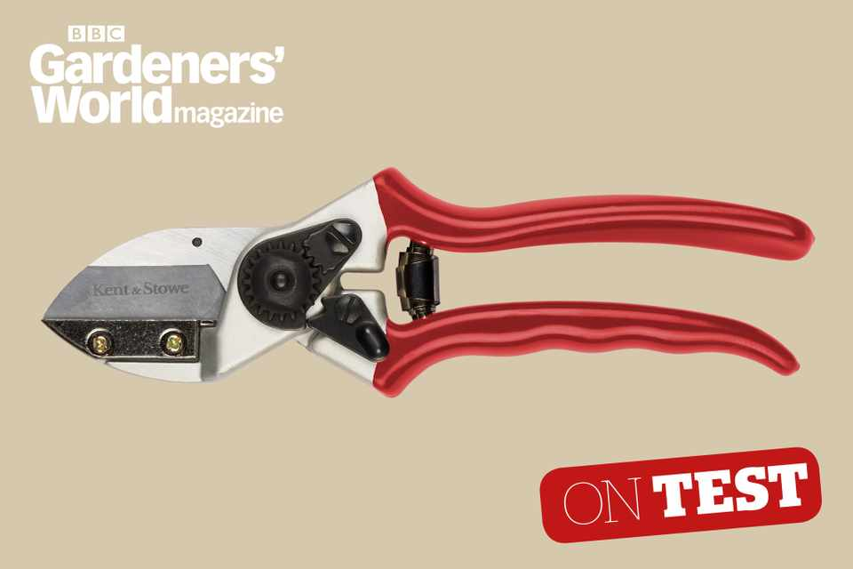 Kent and Stowe Professional Anvil secateurs review