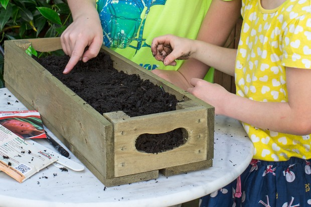 Gardening projects for kids - edible marbles