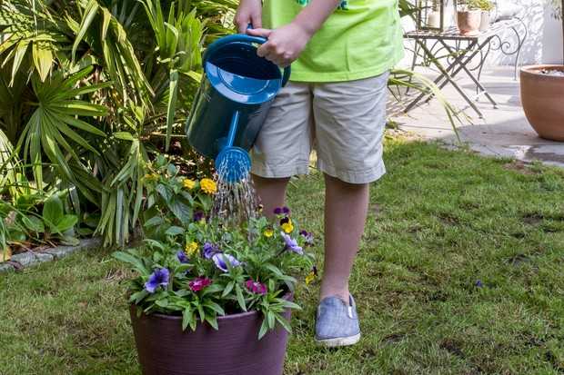 Gardening projects for kids - colourful container project