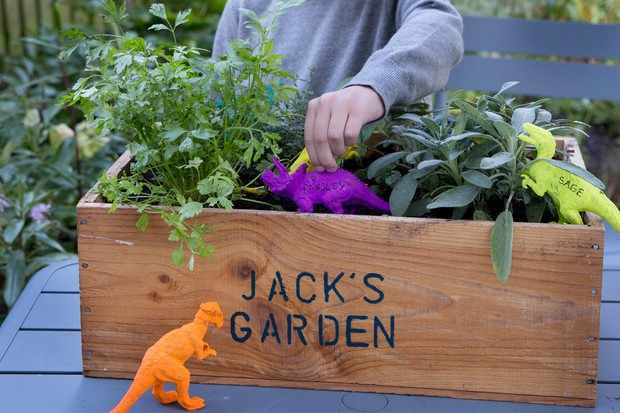 Gardening projects for kids - dinosaur herb planter