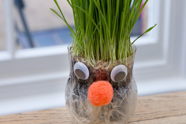 Gardening projects for kids - funny face planter