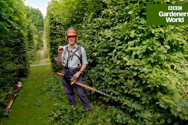 How to cut a hedge with Monty Don