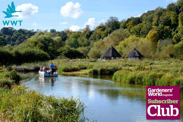 Win a membership to the Wildfowl & Wetlands Trust