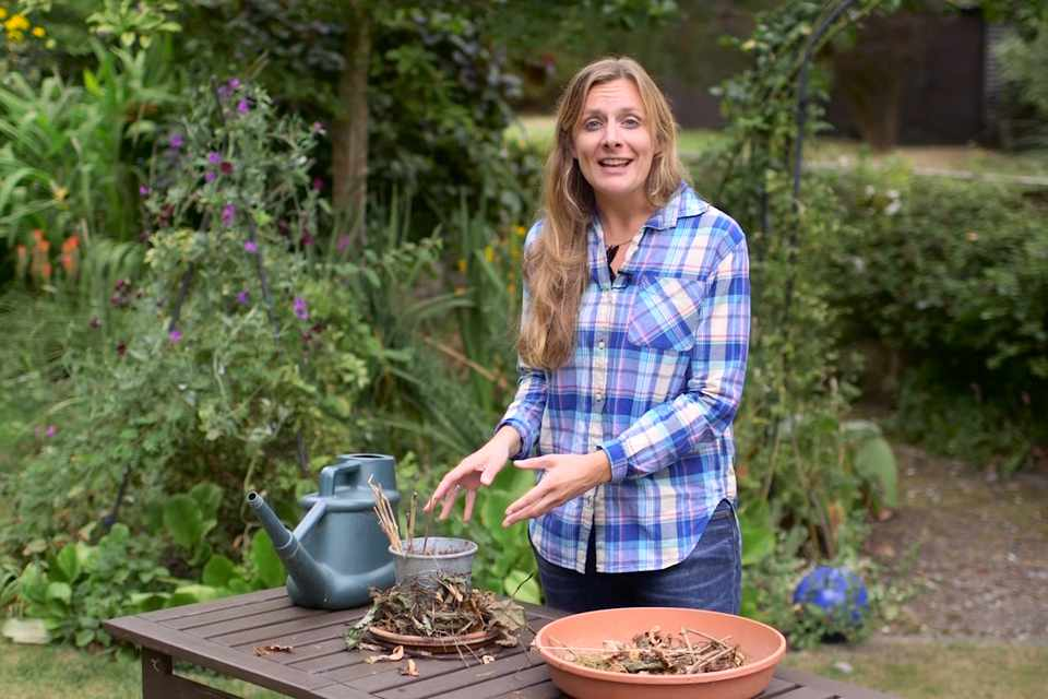 Making a hoverfly lagoon - video featuring Kate Bradbury