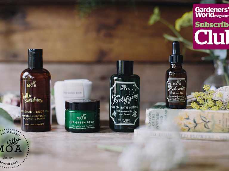 Win a collection of organic skincare, worth over £200